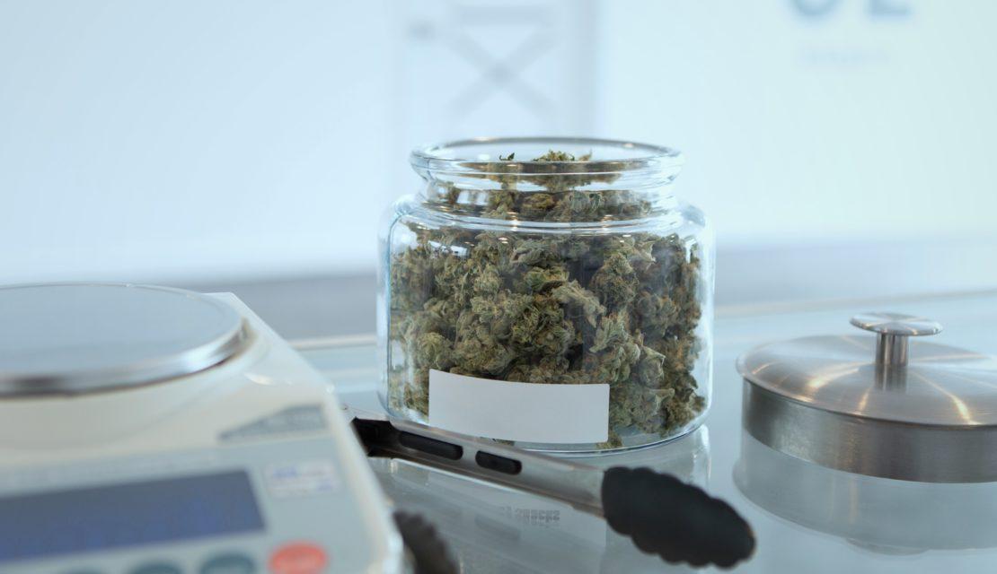 Provisional Cannabis Licenses