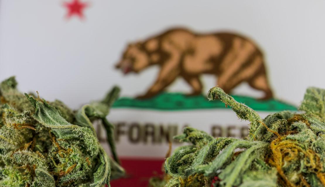 Obtaining a Cannabis Business License in California